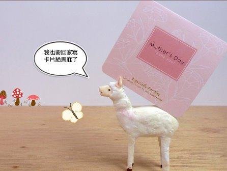 羊駝搬一張卡片回家了