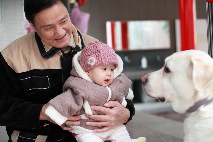 妹妹第一次看到狗狗居然不會害怕,還作勢要向前咬人家