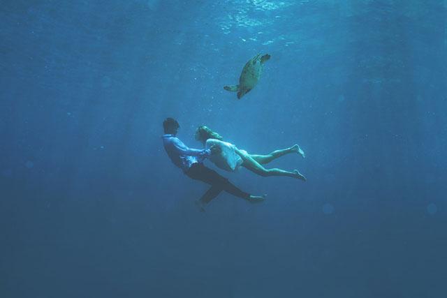 Maui-Underwater-Photographers-10