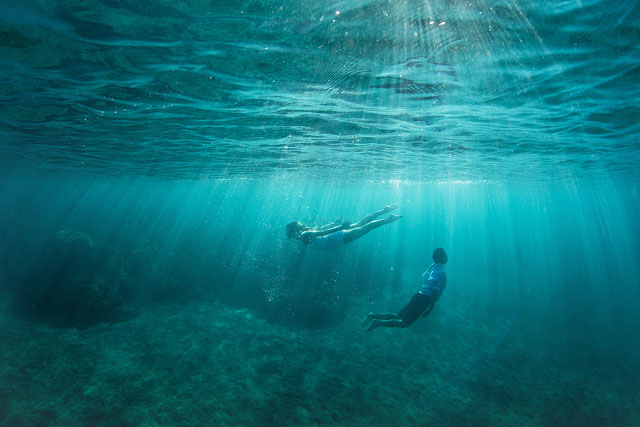 Maui-Underwater-Photographers-34