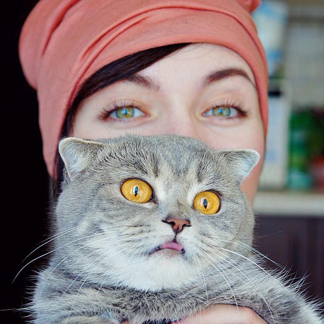 社群网路疯传,爱吐舌头的超可爱猫儿