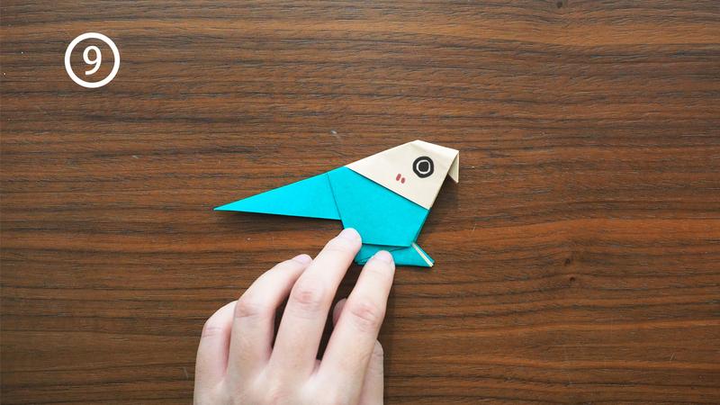 parrot-9-1